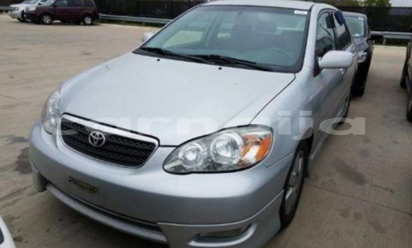 Buy New Toyota Corolla Other Car in Bauchi in Bauchi