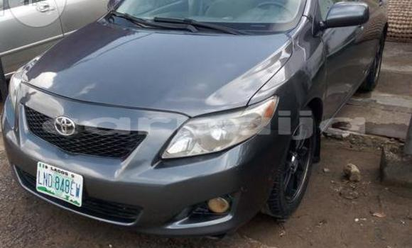 Buy Used Toyota Corolla Other Car in Surulere in Lagos State
