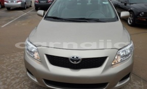 Buy Used Toyota Corolla Other Car in Benin City in Edo