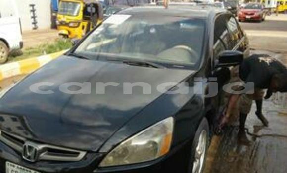 Buy Used Honda Accord Brown Car in Katsina in Katsina