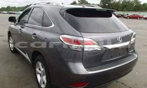 Buy Used Lexus RX 350 Silver Car in Katsina in Katsina