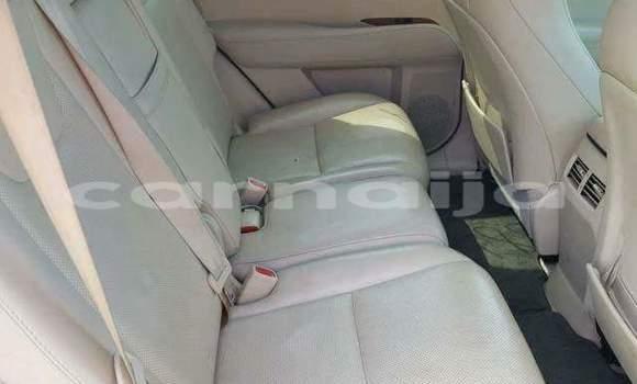 Buy Used Lexus RX 350 Black Car in Daura in Katsina