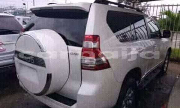 Buy Used Toyota Land Cruiser Prado White Car in Daura in Katsina