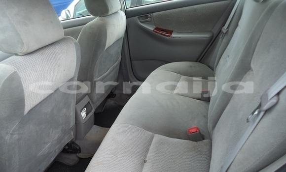 Buy Imported Toyota Corolla Silver Car in Katsina in Katsina