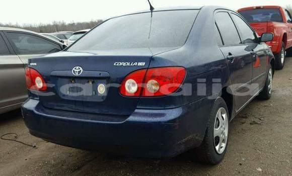 Buy Used Toyota Corolla Blue Car in Lagos in Lagos State