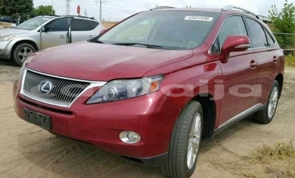 Buy Imported Lexus RX 330 Red Car in Zaria in Kaduna State