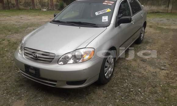 Buy Used Toyota Corolla Silver Car in Yorro in Taraba