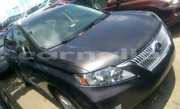 Buy Used Lexus RX Other Car in Daura in Katsina