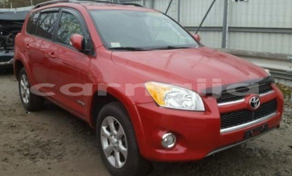 Buy Imported Toyota RAV4 Red Car in Lagos in Lagos State