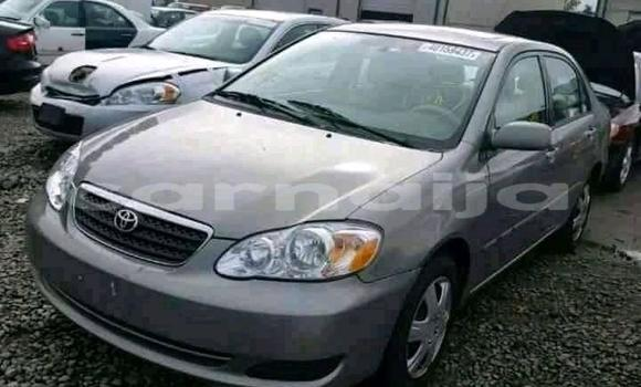Buy Used Toyota Corolla Other Car in Lagos in Lagos State