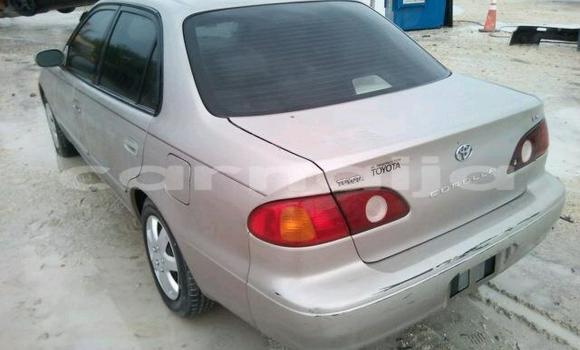 Buy Import Toyota Corolla Other Car in Lafiagi in Kwara State